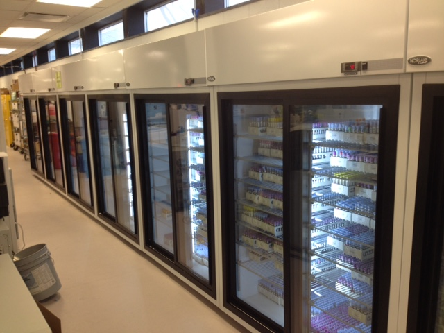 CC PLMI Backfill Move Refrigerator